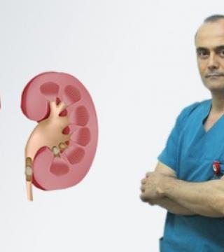 Current Stone Disease Treatment